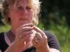 Kräuterwanderung mit Angela Marmor 2012